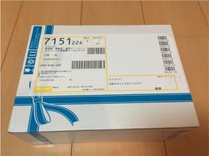 持田製薬 スカルプシャンプー01