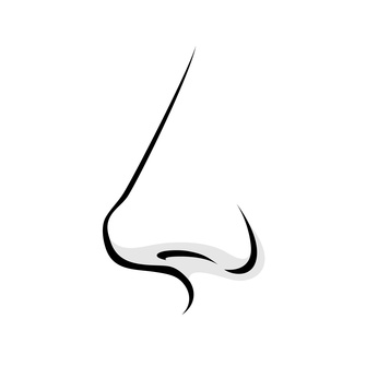 Human nose simple style vector illustration.